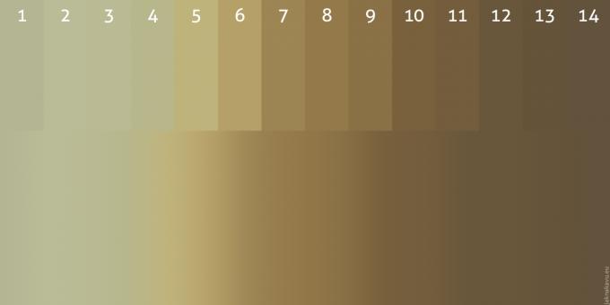 Vývoj barvy a velikosti zrnek kávy při pražení