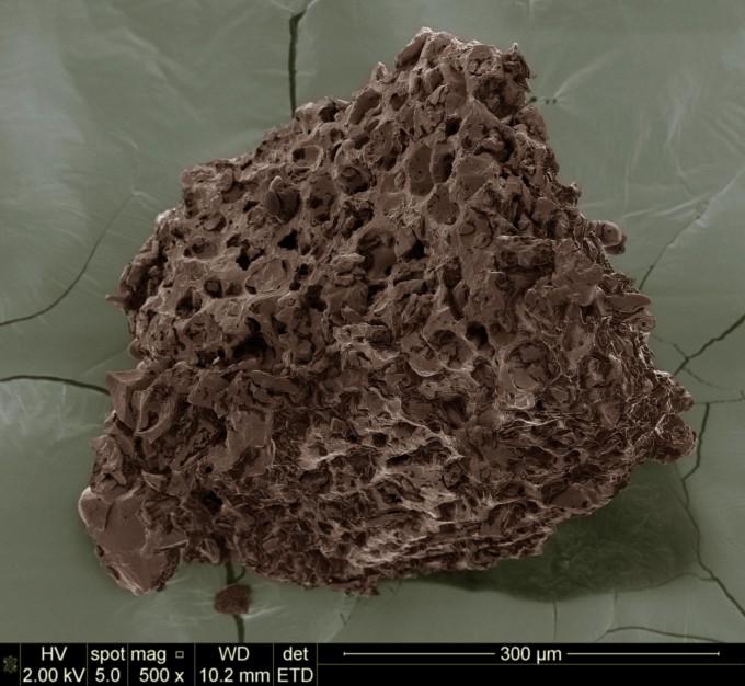 dalsi-fotografie-mlete-kavy-pod-rastrovacim-elektronovym-mikroskopem-sem-2