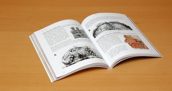 prodej-knihy-jak-na-kavu-7